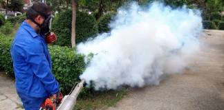 combaterea țânțarilor în București Începe dezinsecția în București